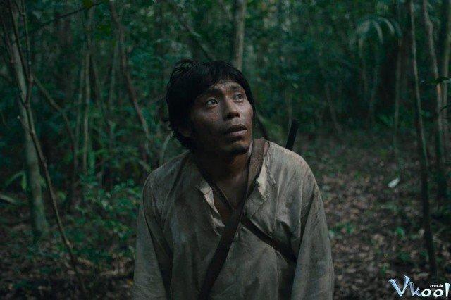 Xem Phim Khu Rừng Bi Thảm - Tragic Jungle - Ahaphim.com - Ảnh 2