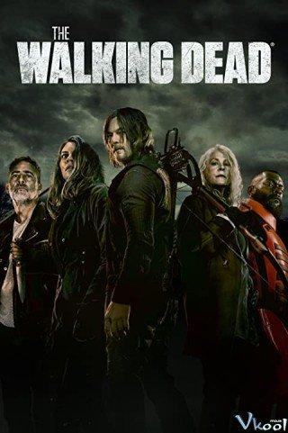 Xác Sống 11 (The Walking Dead Season 11)