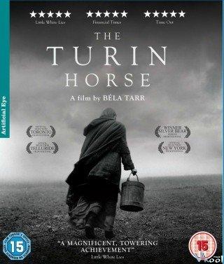 Con Ngựa Thành Turin (The Turin Horse)